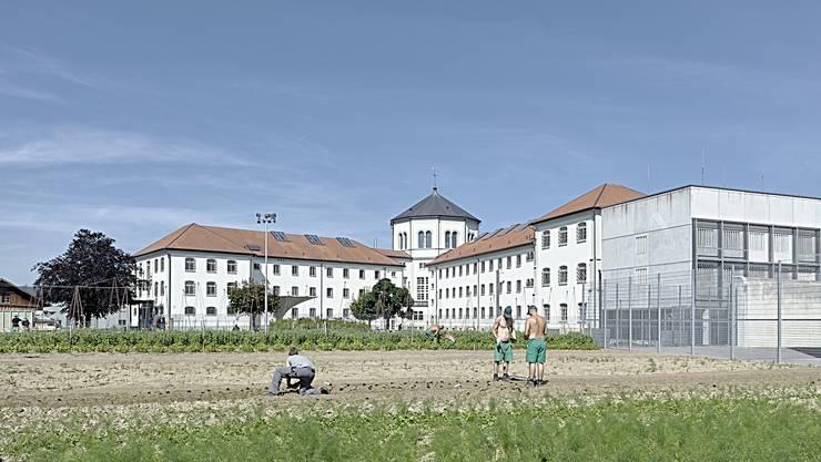 Die JVA Lenzburg verfügt über landwirtschaftliche Nutzfläche, auf der auch Acker- und Futterbau betrieben wird.