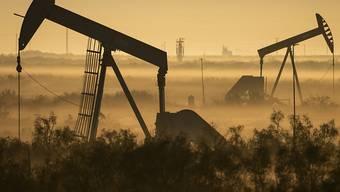 Nach einem dramatischen Einbruch haben sich die Notierungen für Erdöl am Dienstag in Asien etwas erholt. (Symbolbild)