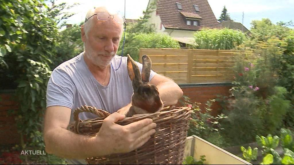Zu wenig Wasser: Roggwiler Kaninchenhalter muss vor Gericht