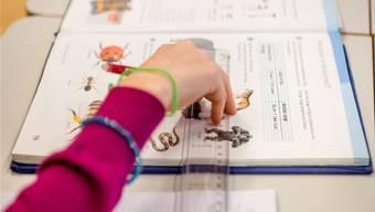 Schulbücher, die im Aargau zum Einsatz kommen, müssen politisch neutral und ausgewogen sein.