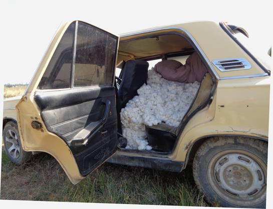 Abtransport unserer Baumwollernte im Lada.