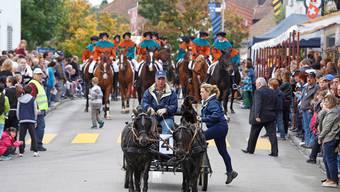 Umzug 2013: Der Kavallerieverein Zurzach im Robin-Hood-Kostüm (hinten). Angeführt wird die Gruppe von Bruno Lüschers Ponygespann. AZ-ARCHIV/Albrecht