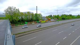 Hier, zwischen der A2 und der ARA Rhein (hinter den Bäumen), wird künftig die Rheinstrasse durchführen.