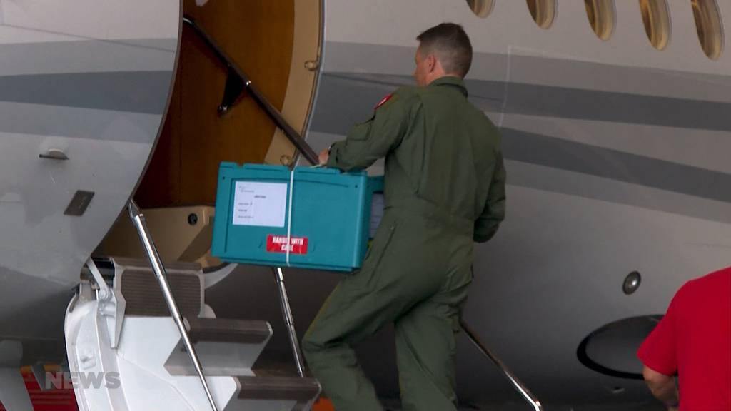Schweiz sendet 1,5 Tonnen medizinisches Material nach Beirut