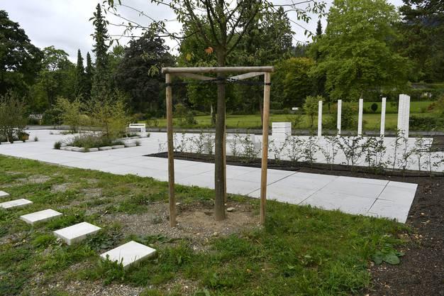 Die neue Grabanlage auf dem Friedhof Grenchen