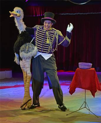 Gleich 250 Jahre feierte der Circus Stey dieses Jahr. Die Tournee ging im Oktober in Steckborn TG zu Ende. Auch der Circus Stey hofft mit einem speziellen Adventsprogramm auf zusätzliche Einnahmen: mit einem Weihnachtszirkus in einem Shoppingcenter in Kriens LU und dem Lachner Wiehnachtszauber in Lachen SZ.