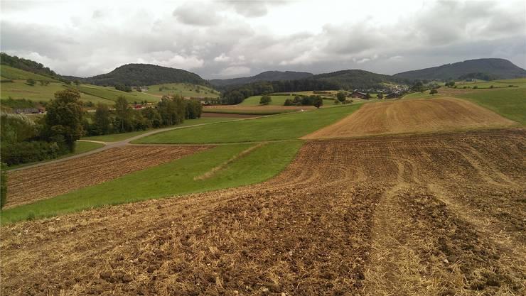 Die Planung der Deponie «Förlig» wurde im März dieses Jahres verworfen.