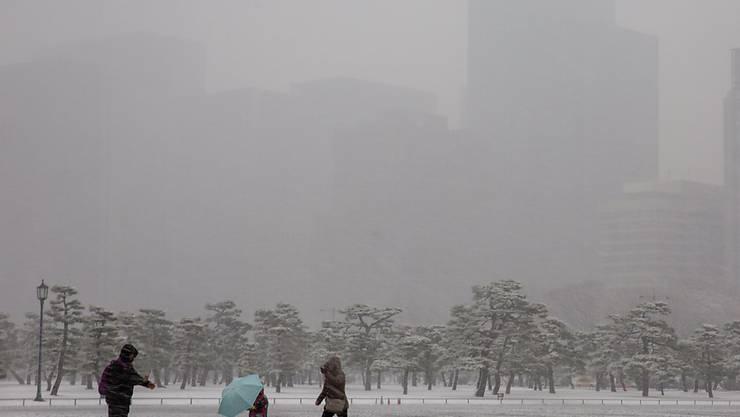 Passanten kämpfen sich durch die Schneeschnauer in einem Park in Tokio.