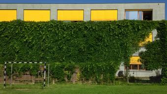 Ist das Flugblatt der Birmensdorfer Schulpflegen, auf dem sie sich gegen die Einheitsgemeinden aussprechen, rechtens? Mit dieser Frage muss sich der Bezirksrat beschäftigen. Im Bild: das Schulhaus Reppisch in Birmensdorf.