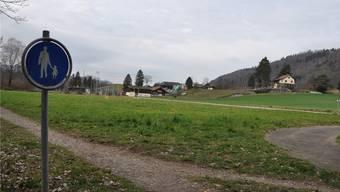 Schon bald wird hier, zwischen Tennisplatz und Mutschellenstrasse, ein Pumpwerk für das Furttal gebaut: das Feld Looächer in Oetwil.