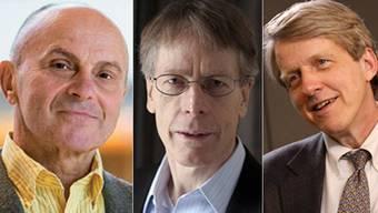 Die Gewinner heissen Eugene Fama, Lars Peter Hansen und Robert Shiller.