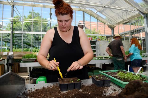 Ihr Spezialgebiet ist das Aussäen von Gemüse- und Blütenpflanzen, das sie nur mit geringer Begleitung durchführt.