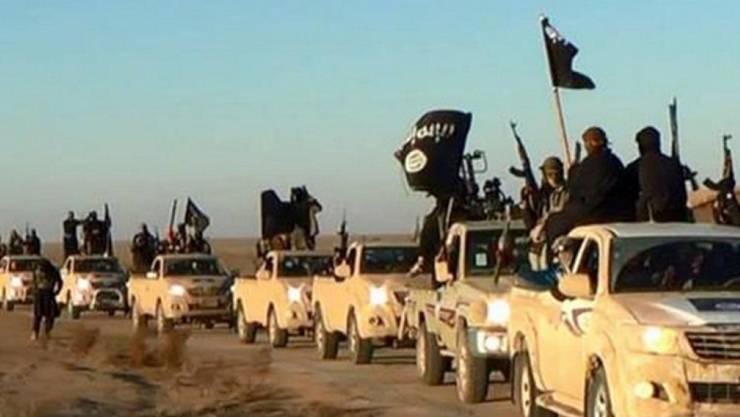 Einheiten der Terrormiliz bei der Einfahrt in die Stadt Raka 2014 (Archiv)