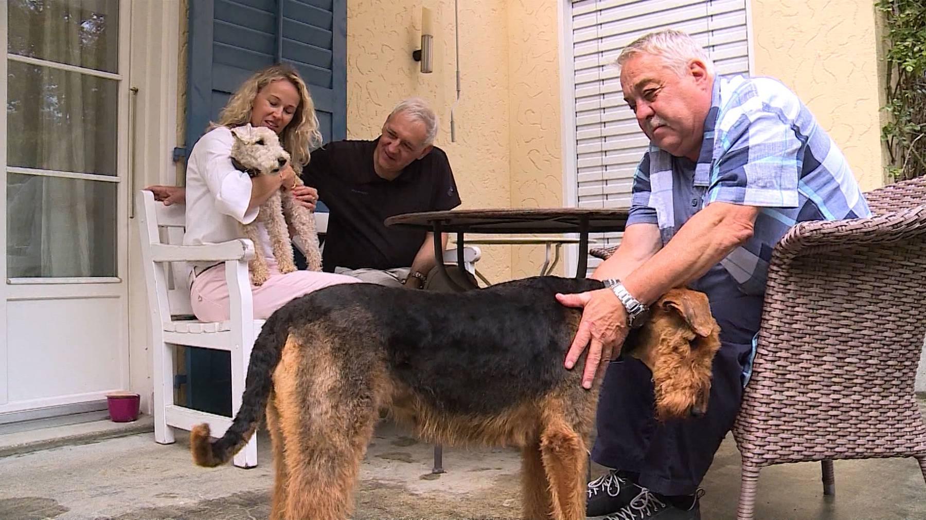 Altersheim für Haustiere