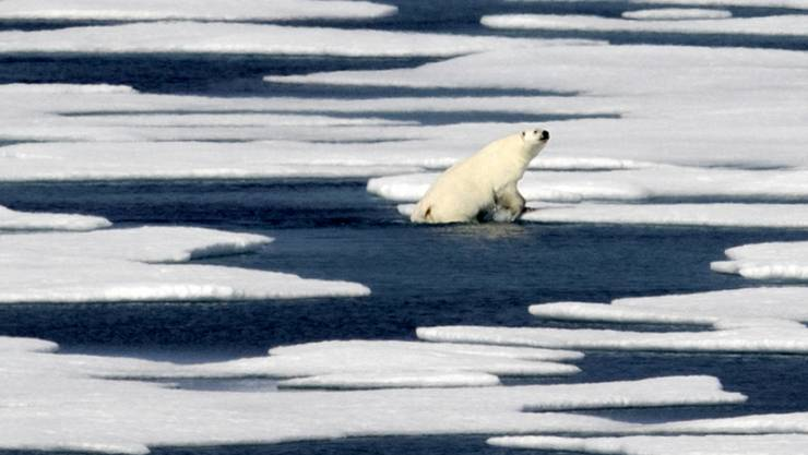 Das Arktis-Eis schmilzt rasant weiter. Einer der Gründe: Laut einer US-Untersuchung haben die Emissionen der drei schädlichsten Treibhausgase Kohlendioxid (CO2), Methan und Lachgas 2017 neue Rekordausmasse erreicht. (Themenbild)