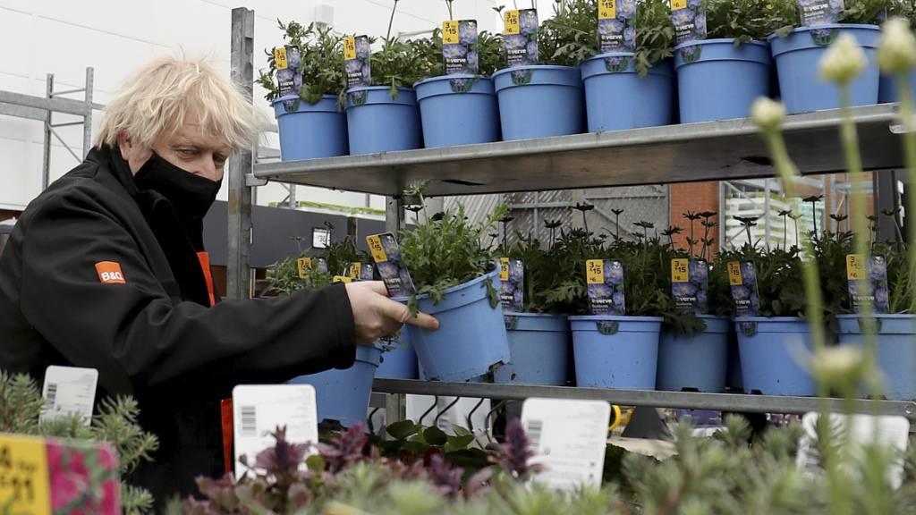 dpatopbilder - Boris Johnson, Premierminister von Großbritannien, wählt während seines Besuchs im Gartenzentrum eines Baumarktes eine Pflanze aus. Foto: Scott Heppell/AP Pool/dpa