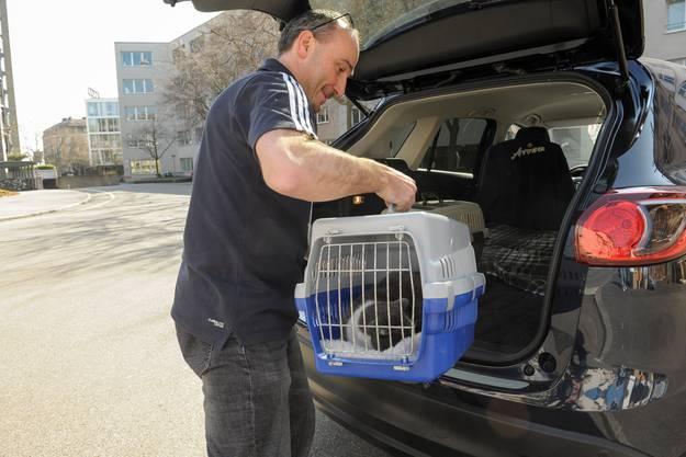 Das neue Katzenheim befindet sich in Muttenz.