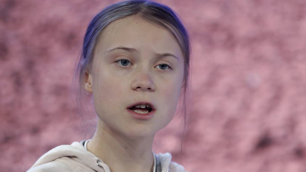 Greta Thunberg: Klima bei EU-Verhandlungen völlig ignoriert
