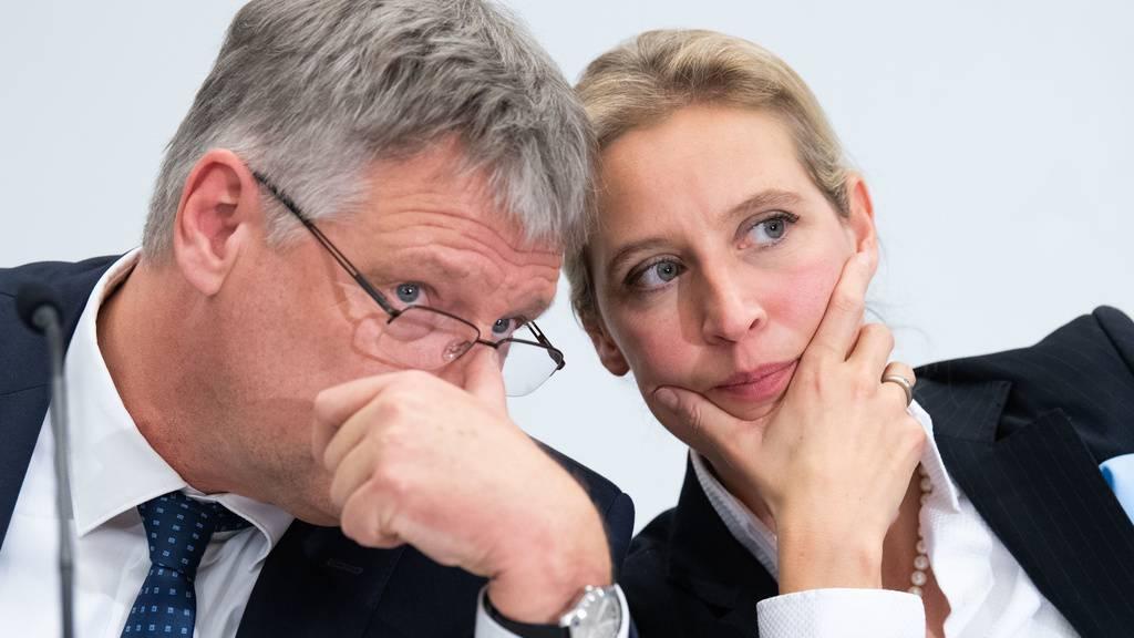 404061613_highresJörg Meuthen und Alice Weidel haben von der Schweizer Goal AG mehr als nur finanzielle Unterstützung bekommen.