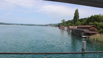 Die Hitzwelle macht den See gesünder