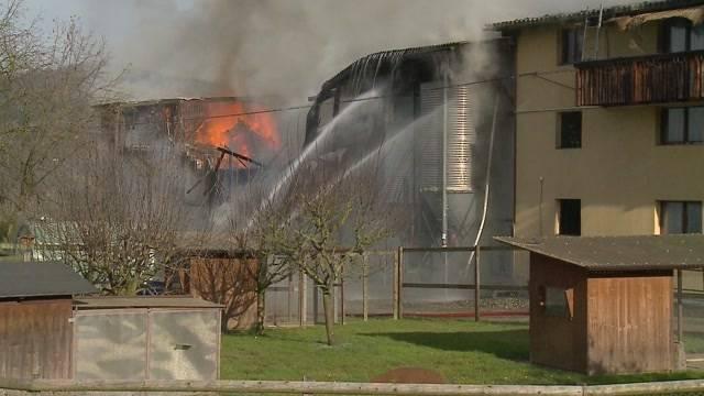 Hühnerfarm in Veltheim abgebrannt