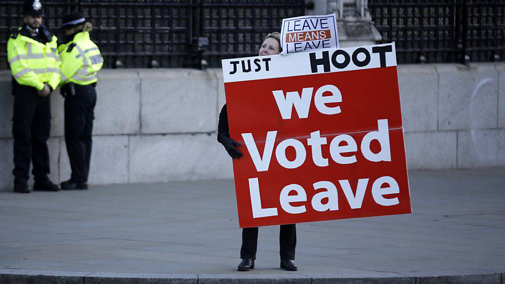 Eine Pro-Brexit-Demonstrantin demonstriert am 8. Januar 2019 in London.
