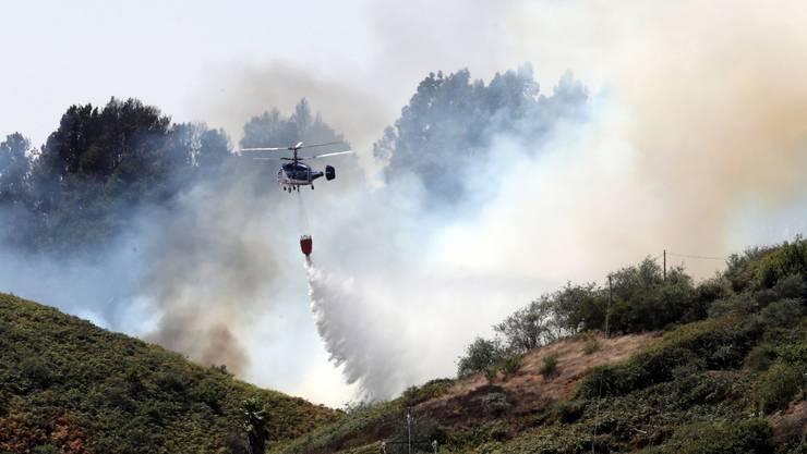 Rund 6000 Hektar Fläche auf der spanischen Urlaubsinsel sind schon von dem Feuer betroffen.