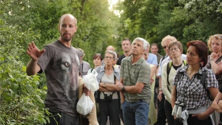 «Wenn ein Biber einen Baum fällt, meinen wir, wir müssen ihn wegräumen», sagt Biologe David Gerke. Dabei hätten die Baumstämme durchaus ihren Zweck.