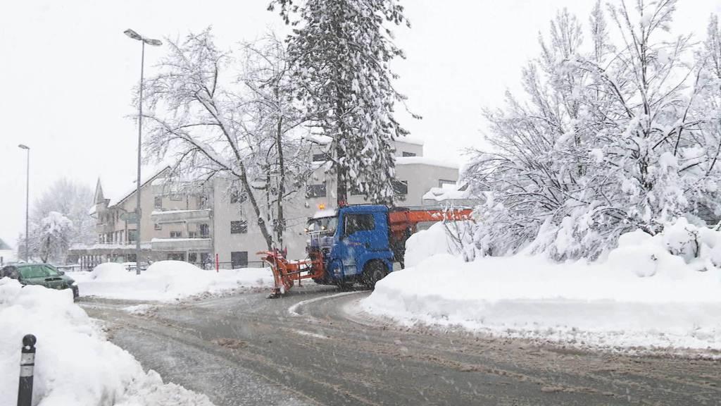 Zirkeln mit Riesengefährt: Unterwegs mit Schneepflug-Pädi