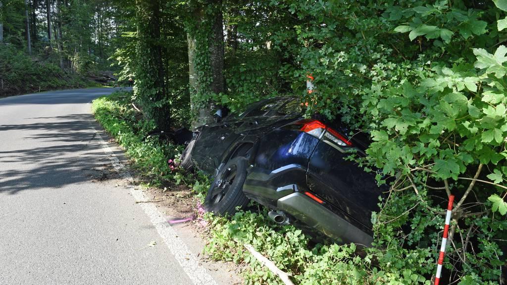 Autofahrerin prallt in Hitzkirch frontal gegen einen Baum