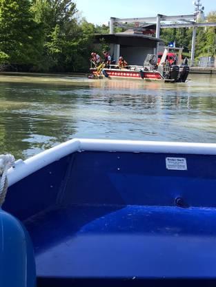 Bilder vom Kuhrettungseinsatz der Polizei Laufenburg auf dem Rhein.