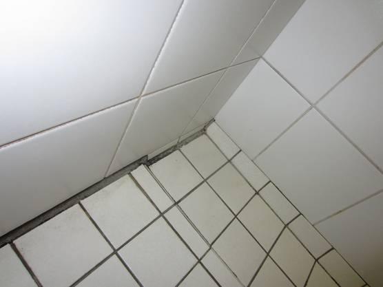CIS-Duschen