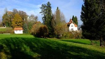 Der «Schlosshügel Süd», wo bis anhin eine gemischte Nutzung von Gewerbe, Landwirtschaft und Wohnen erlaubt war, soll Wohnzone werden.