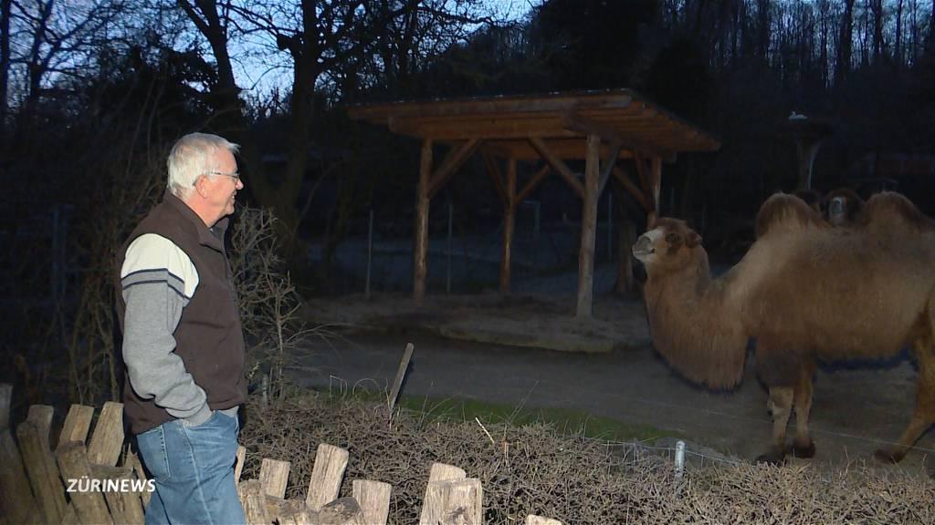 Zoo Zürich geschlossen: Lewa-Eröffnung im Sommer wohl ohne Alex Rübel