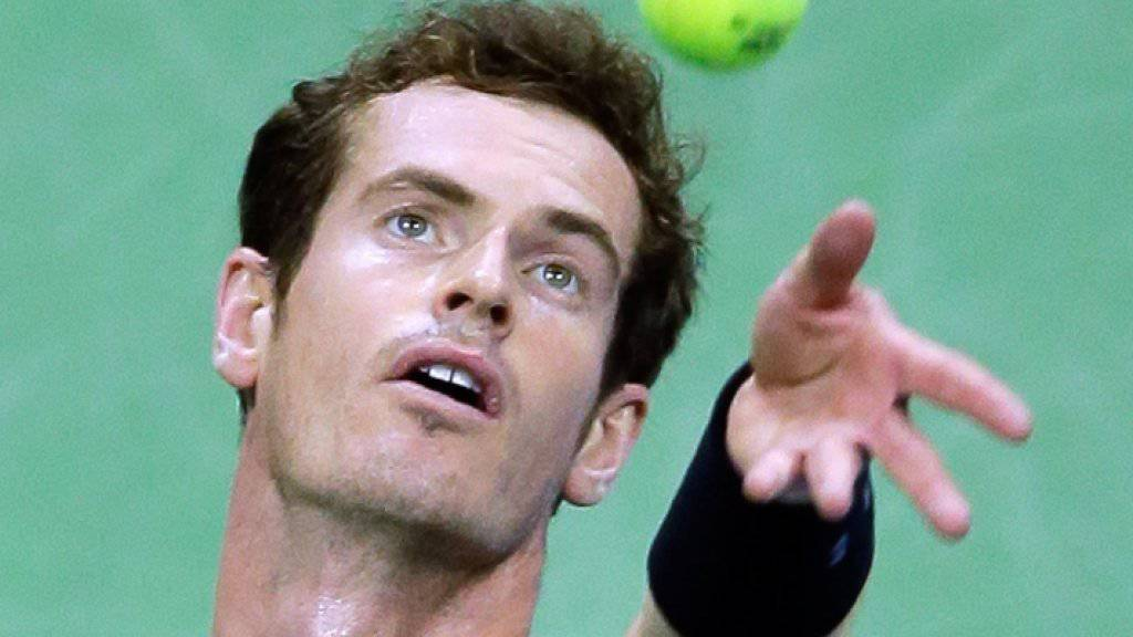 Andy Murray hofft auf Asse