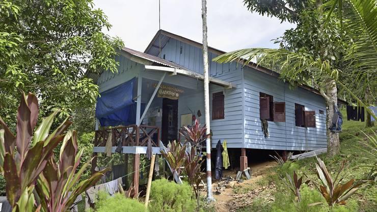 In der Suaq-Forschungsstation im Dschungel Sumatras erforscht die Uni Zürich Orang-Utans.