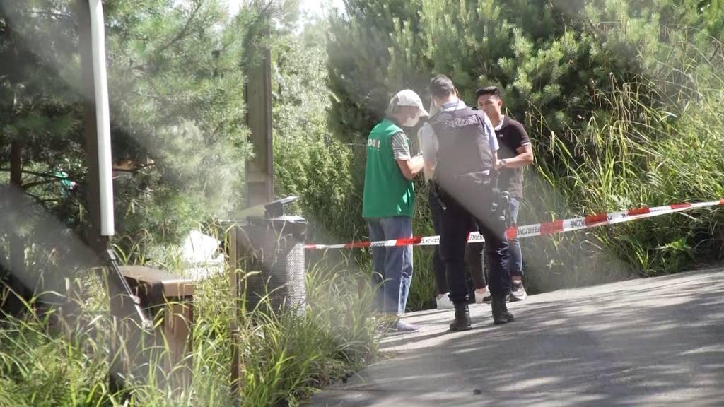 Tierpflegerin stirbt im Zoo Zürich nach Tigerattacke