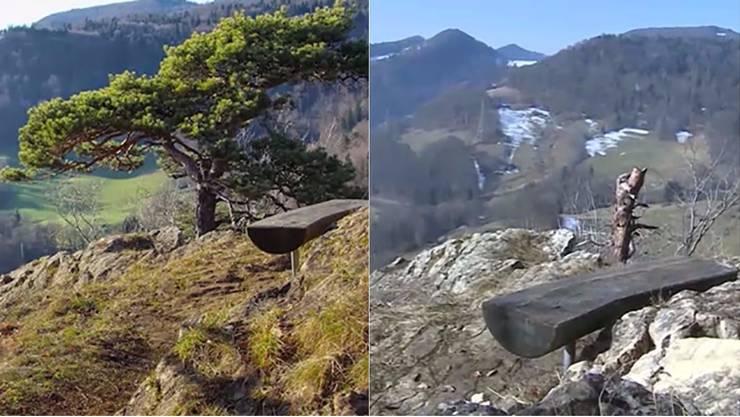 Die magische Föhre auf der Ramsfluh vor (links) und nach dem nach wie vor ungeklärten Baumfrevel.