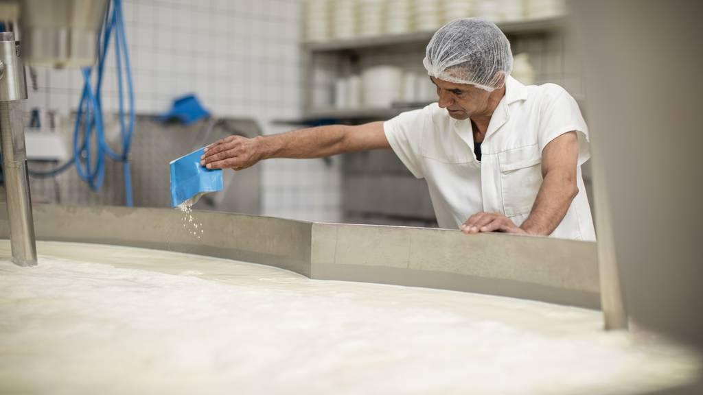 Für Billigkäse: Rheintaler Käserei will drei Millionen Liter Milch importieren