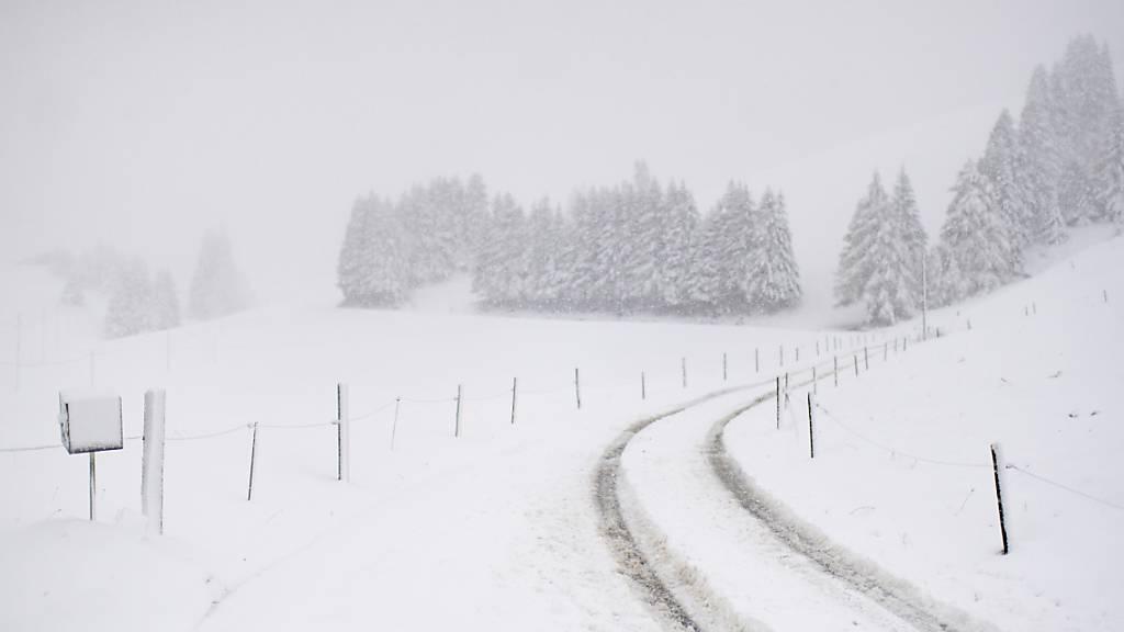 Schnee und Hudelwetter: Verschneite Landschaft in St. Margrethenberg SG.