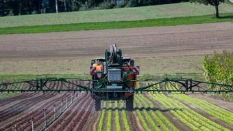 Dank gezielter Anwendung braucht es viel weniger Herbizide.