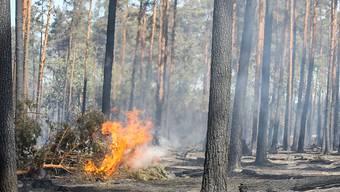 Zahlreiche Kantone mahnen zum sorgfältigen Umgang mit Feuer wegen der zunehmenden Waldbrandgefahr. (Archivbild)