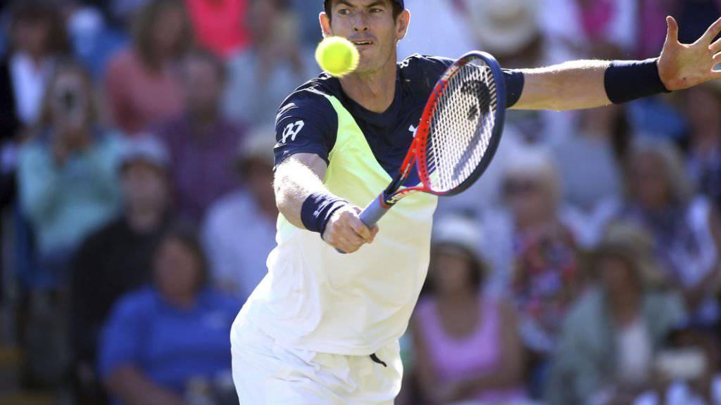 Andy Murray ist nach seiner Verletzungspause auch noch auf Formsuche