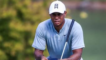 Tiger Woods mit höchster Konzentration vor dem Green