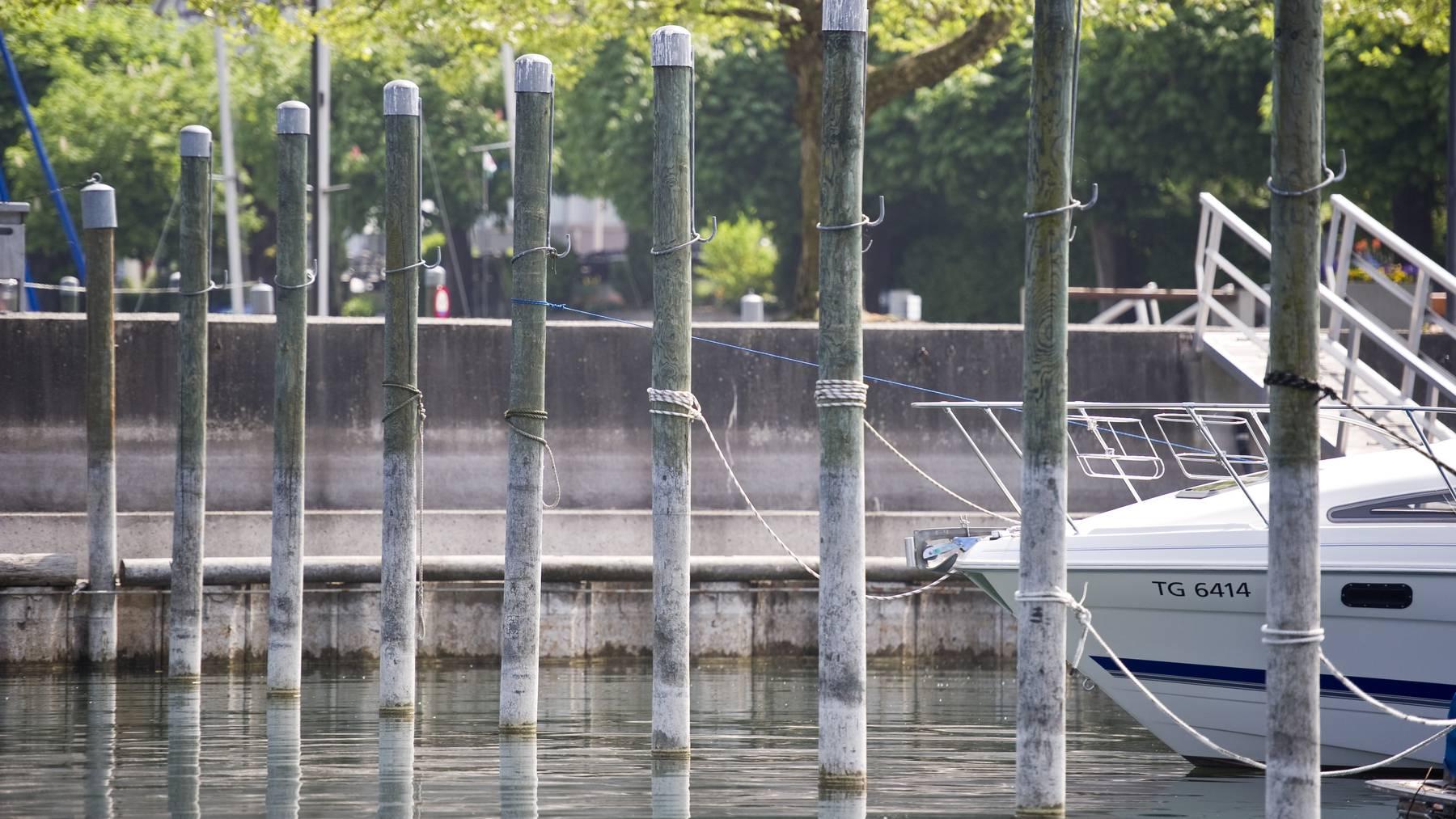 Im Hafen von Horn sind Blaualgen entdeckt worden. (Archivbild)