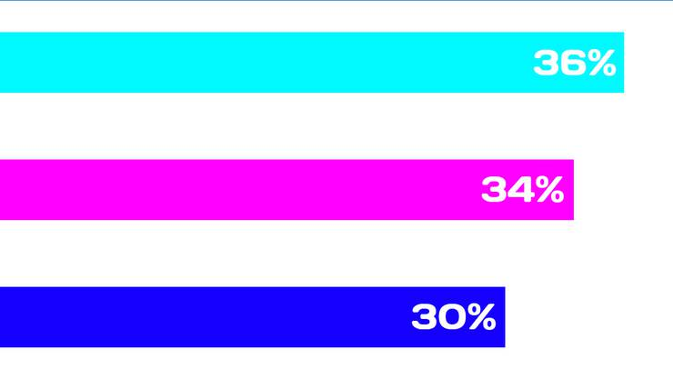 <p>Es ging um wenige Stimmen: Mit 36% hat sich Annina am Schluss durchgesetzt.</p>