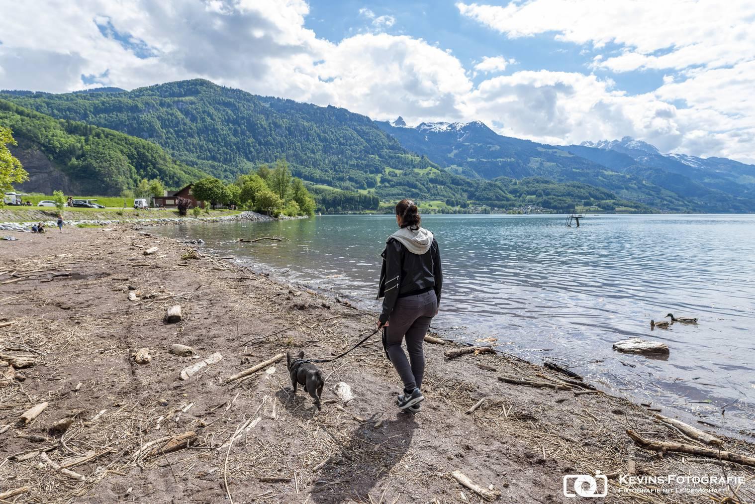 Hundebesitzern bietet sich direkt am Seeufer ein trostloses Bild. (Foto: Kevin Suter)