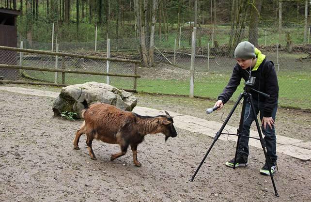 Bekommt Lenny ein Interview von der Ziege?
