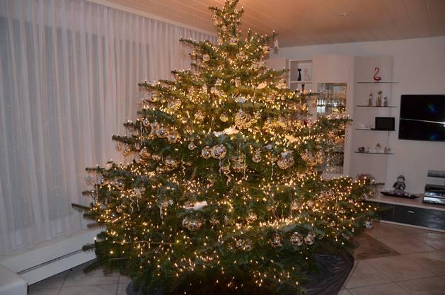 Der Weihnachtsbaum 2014 mit 3660 Kerzen u. 324 Kugeln und vieles mehr aus Villnachern.