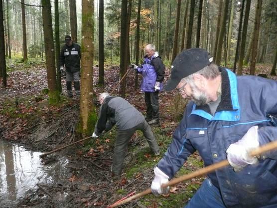 Ein Biotop im Lohner Wald wird wieder funktionstüchtig gemacht.